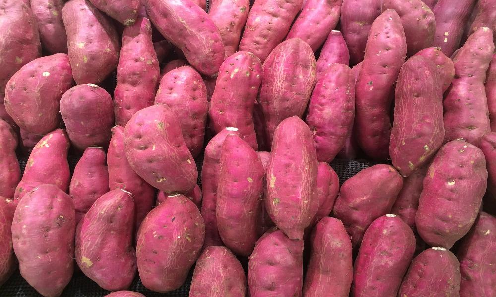 farmecul costurilor pret cu ridicata reduceri mari Hachis pas parmentier (à la patate douce) | Berthine